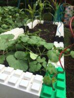 Separate Kies- und Grasflächen und definierte Bereiche und Räume schnell mit unserer modularen Gartenkante schaffen: mit EverBlock®.
